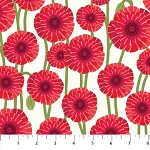 POPPY LOVE CREAM POPPY, BY NORTHCOTT