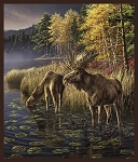 MULTI MOOSE PANEL, BY WHISTLER STUDIO