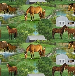 WILD WINGS SUMMER HORSE SCENIC,BY SPRINGS