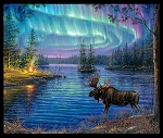 NORTHERN LIGHTS MOOSE PANEL, BY ELIZABETH STUDIO