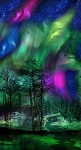 MULTI NORTHERN LIGHTS PANEL, BY TIMELESS TREASURES