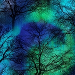 COBALT NORTHERN LIGHTS TREES, BY TIMELESS TREASURES