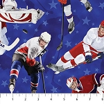 ALL STAR HOCKEY DP PLAYERS ON BLUE, BY NORTHCOTT