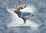 CALL OF THE WILD , FOG ELK ,BY HOFFMAN