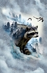 CALL OF THE WILD , ICE RACOON ,BY HOFFMAN