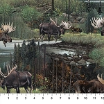 MOOSE LAKE DIGITALLY PRINTED SCENIC MOOSE ALLOVER BY NORTHCOTT