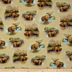 BY WATER'S EDGE TAN MOOSE,BY QUILTING TREASURES