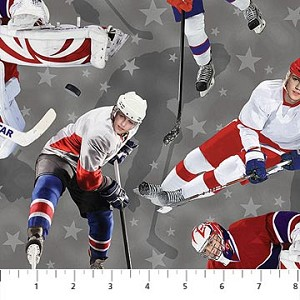 ALL STAR HOCKEY DP PLAYERS ON GREY, BY NORTHCOTT